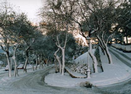 Viale Castello dopo la nevicata del '99